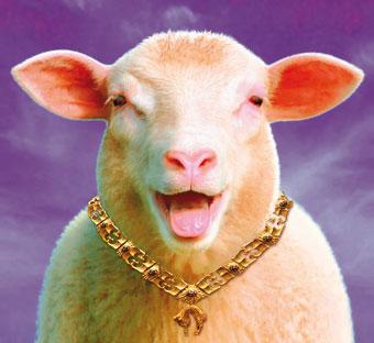 """Résultat de recherche d'images pour """"mouton riche"""""""